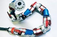 snake-robot