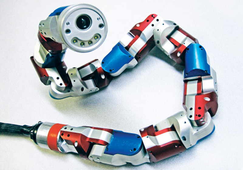 Surgical Snake Robots: Accessing Organs and Tissues Deep in the Body