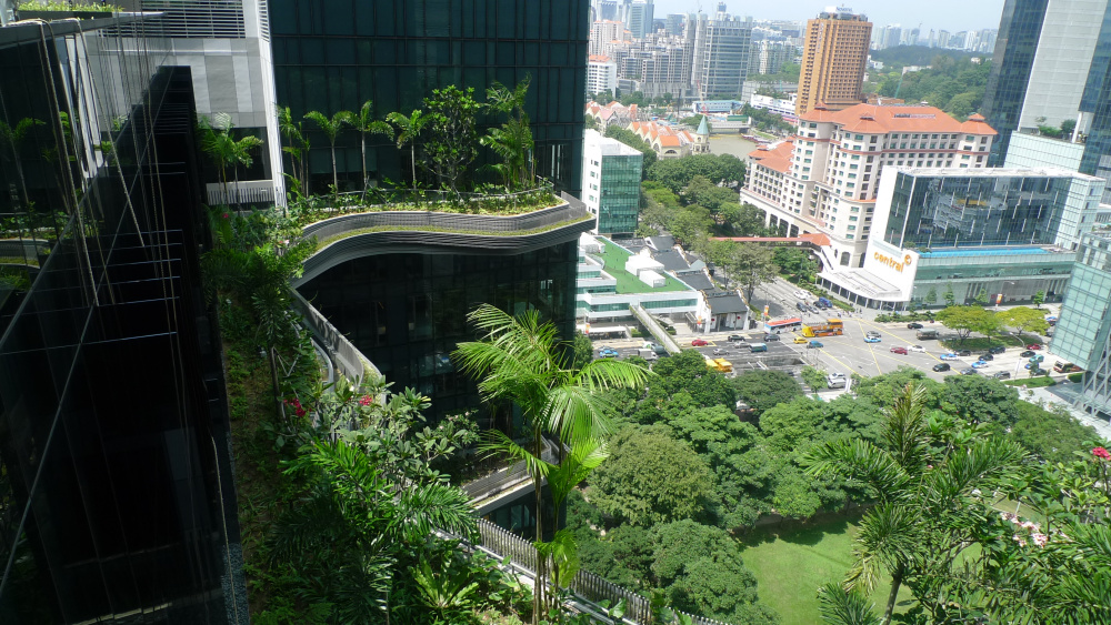 15,000 Square Meters Of Sky Gardens Connecting Singapore's ...