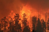 New technology can predict a fire's path. Image courtesy freedomrings1776.com