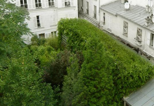 'Lost in Paris'… A Living Green House Engulfed By Plants