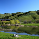"""""""Star Wars"""" Creator George Lucas Battles Neighbors Over Affordable Housing Project in Wealthy Marin County"""