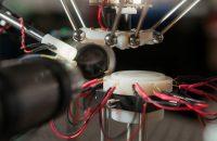 Robot Fruit Fly Surgery