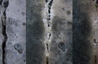 The bioconcrete healing itself (Image Courtesy of Delft University)