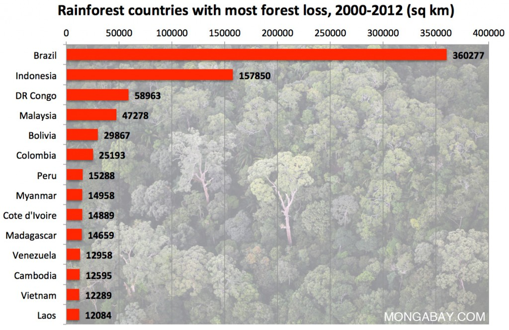rainforest-countries-with-most-deforestation
