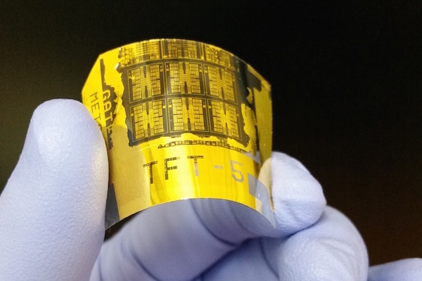 Flexible Phototransistor