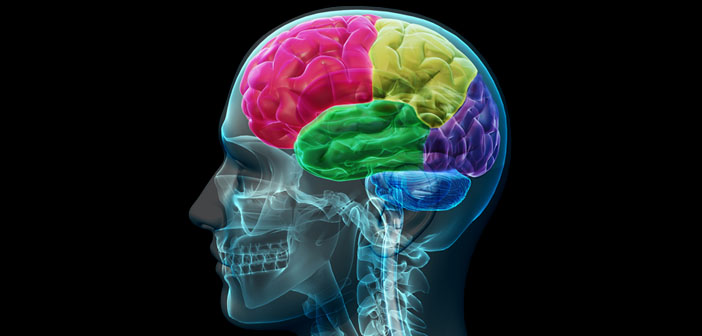 A Look Into the Intriguing Ability of the Brain to Control Consciousness