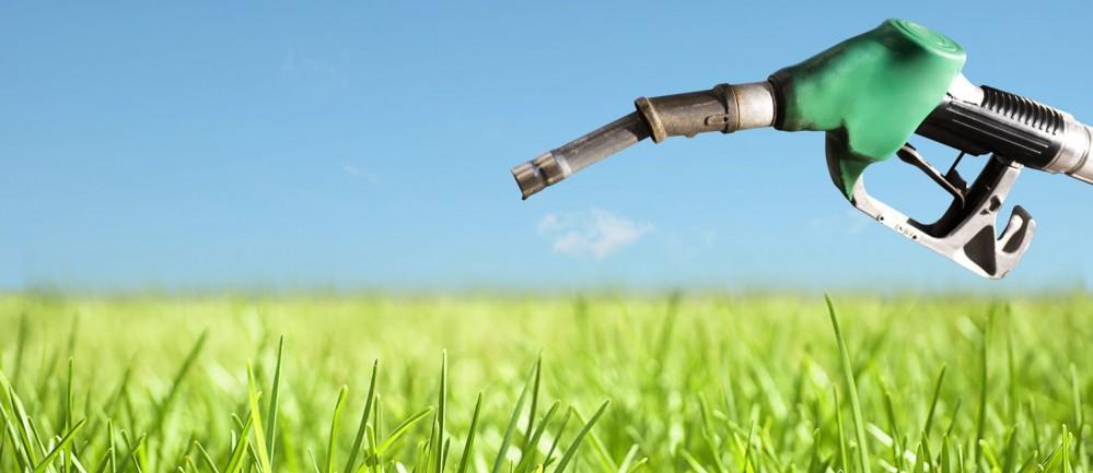 Renewable Fuel Standards