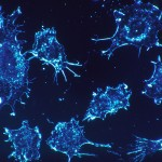 New Cancer Research Reveals How Cells Escape Blood Vessels