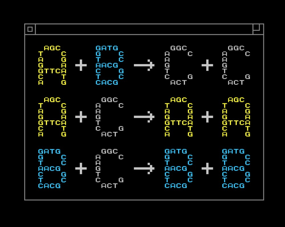 Chemical Programming Synthetic DNA
