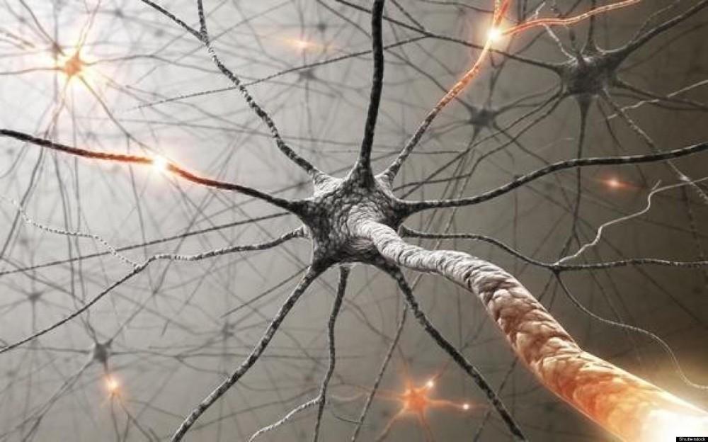 Resuscitation Revive Brains
