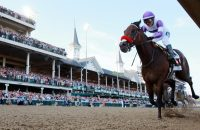 Swarm Intelligence Predicts Horse Racing: 142nd Kentucky Derby