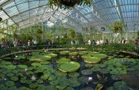 Kew Gardens: Biosequestration and Agricultural Waste Management