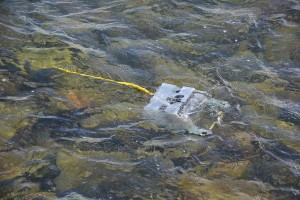 Underwater Drones Enabling the Comprehensive Study of the World's Oceans