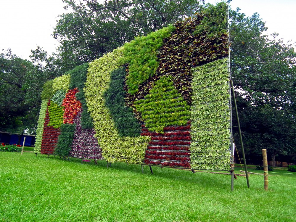 Vertical gardens for green thumbs sustainability - Jardines en vertical ...