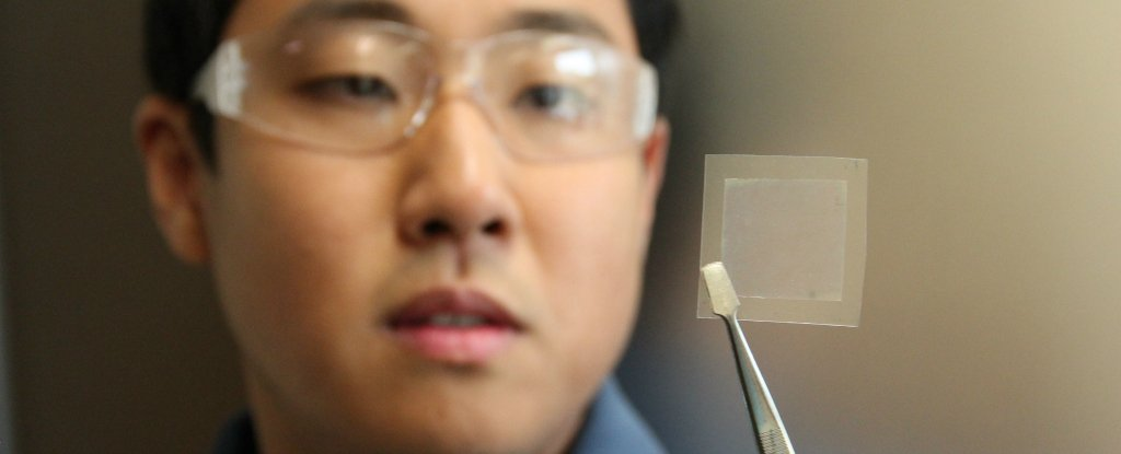 Scientists Have Turned Soybean Oil Into a Material 200 Times Stronger Than Steel