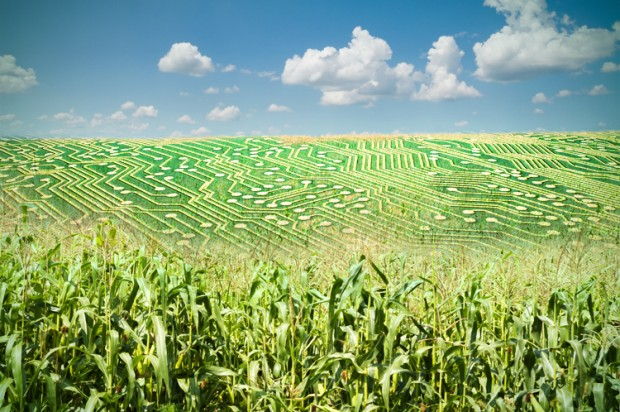 Big Data Agriculture