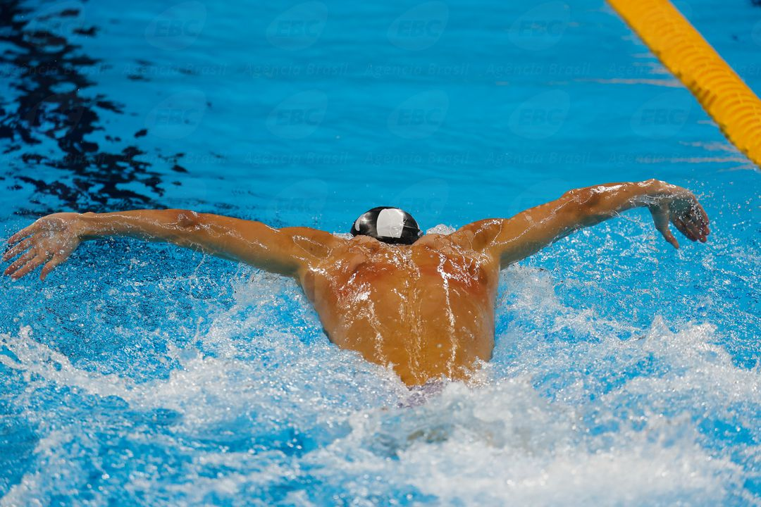 Engineering Ethics, Michael-Phelps