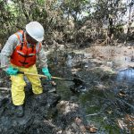 How Bioremediation Helps Clean Up What Nature Can't