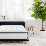 How This Unprecedented Innovation is Revolutionizing the Mattress Industry