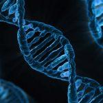 DNA Is The Next Big Data Storage Technology