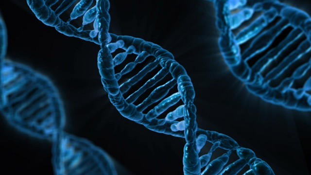 DNA Is The Next Big Data Storage Technology