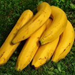 Golden Bananas Save Lives of Children in Africa