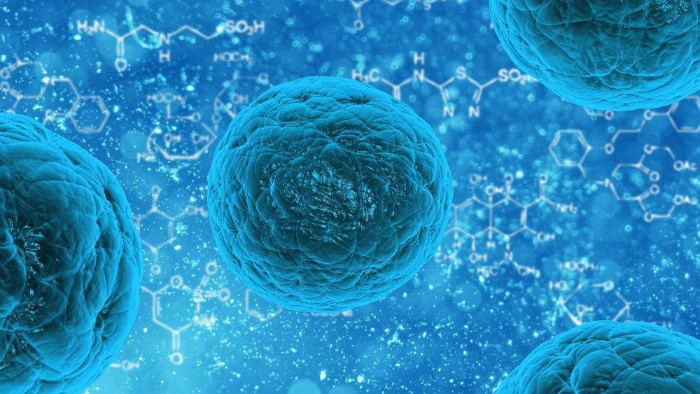 Using Electric Fields & Neural Stem Cells to Repair Brain