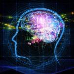 Brainternet: Scientists Connect a Human Brain to Internet