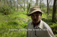 "Jadav Molai Payeng: ""Forest Man of India"""
