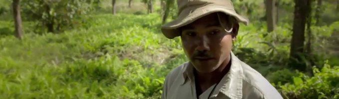 """Meet  Jadav Molai Payeng: """"Forest Man of India"""""""