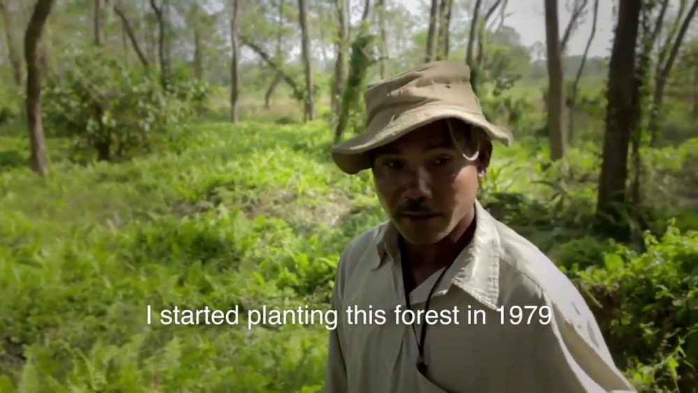 "Jadav Molai Payeng: ""Forest Man of India"""