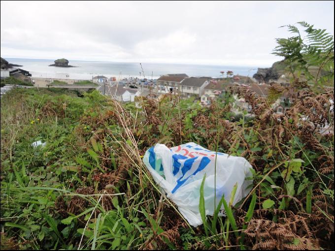 Plastic Bag Pollution Turned into Eco-Friendly Carbon Nanotubes