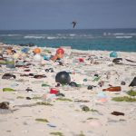 EU Declares Its Strategy to Eliminate Single-Use Plastics