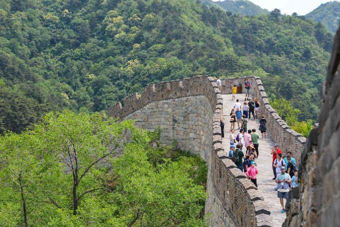 China Reforestation