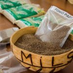 Fonio, a Tiny African Grain, Is New Superfood