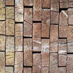 Scientists Create Super Wood Strong as Steel