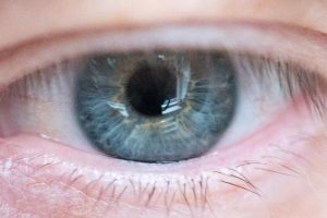 Stem Cell-Based Retinal Implant Could Stop Age-Related Blindness