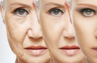Is Aging Reversible