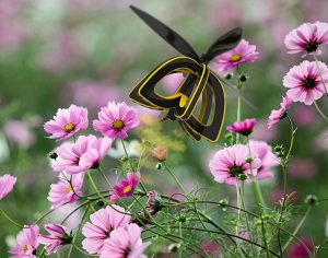 What's All the Buzz About Pollinator Drones?