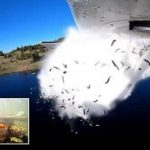 Watch Thousands of Fish Blasted Out of a Plane to Restock Utah Lake