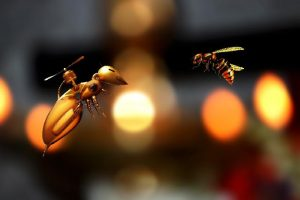 Robotic Insects & the Flight of the Bumblebee