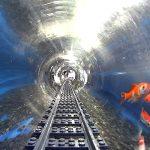 Soon Underwater Rail Will Connect Mumbai to the UAE