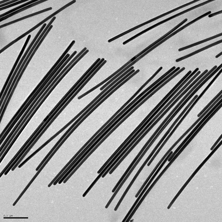 Nanowires that Grow with the Help of Vitamin C