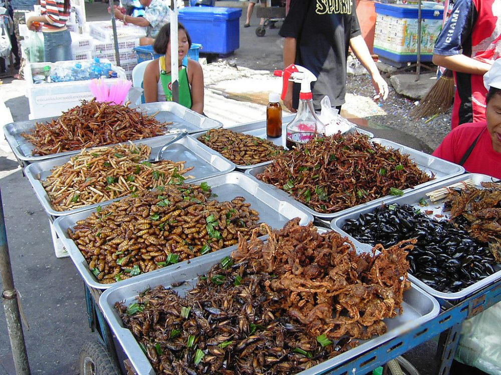 Bugs Such As Silkworms, Locusts, Caterpillars, and Crickets Just Might Be the Future of Food