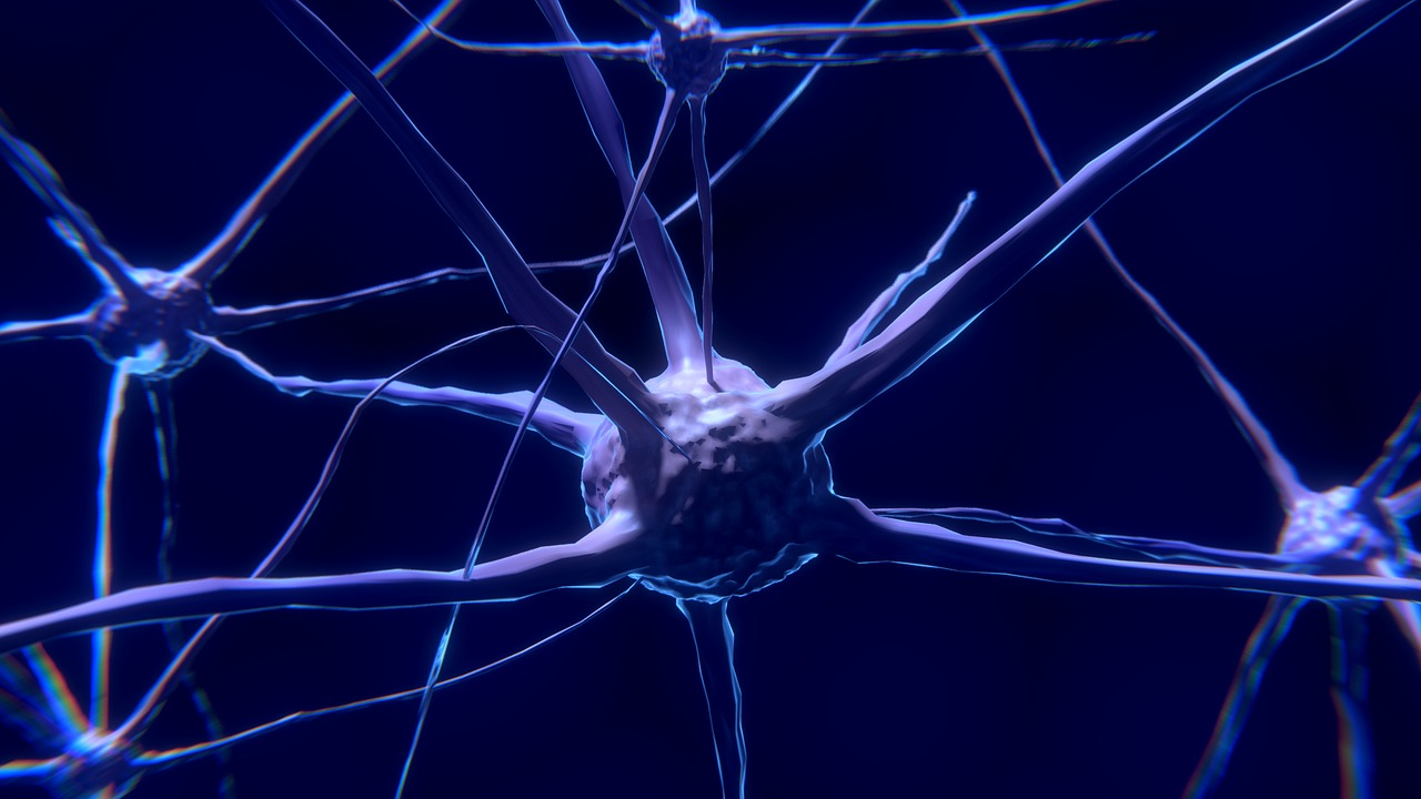 Researchers Use Nanoelectrodes to Capture Signals Across Whole Neuron Networks