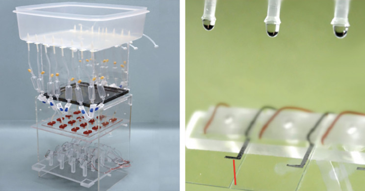 Scientists Develop Electricity Generator That Can Light Up 100 Led Bulbs With A Single Raindrop