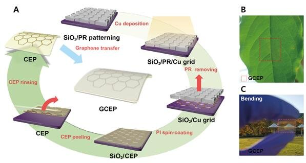 Electrode Platform with Graphene Layer Highly Enhanced the Performance of Perovskite Solar Cells