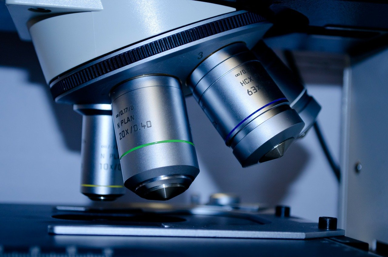 Biotechnology Know-How: How Protein Or Gene Expression Benefits People